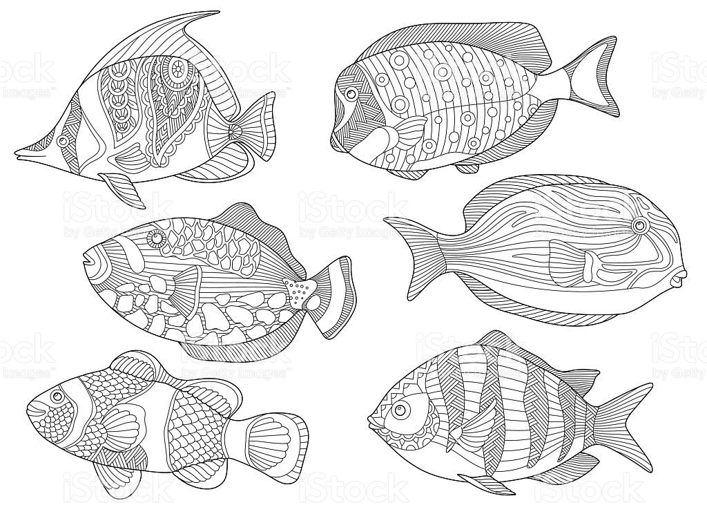 Stylized collection of underwater tropical fishes for adult anti ...