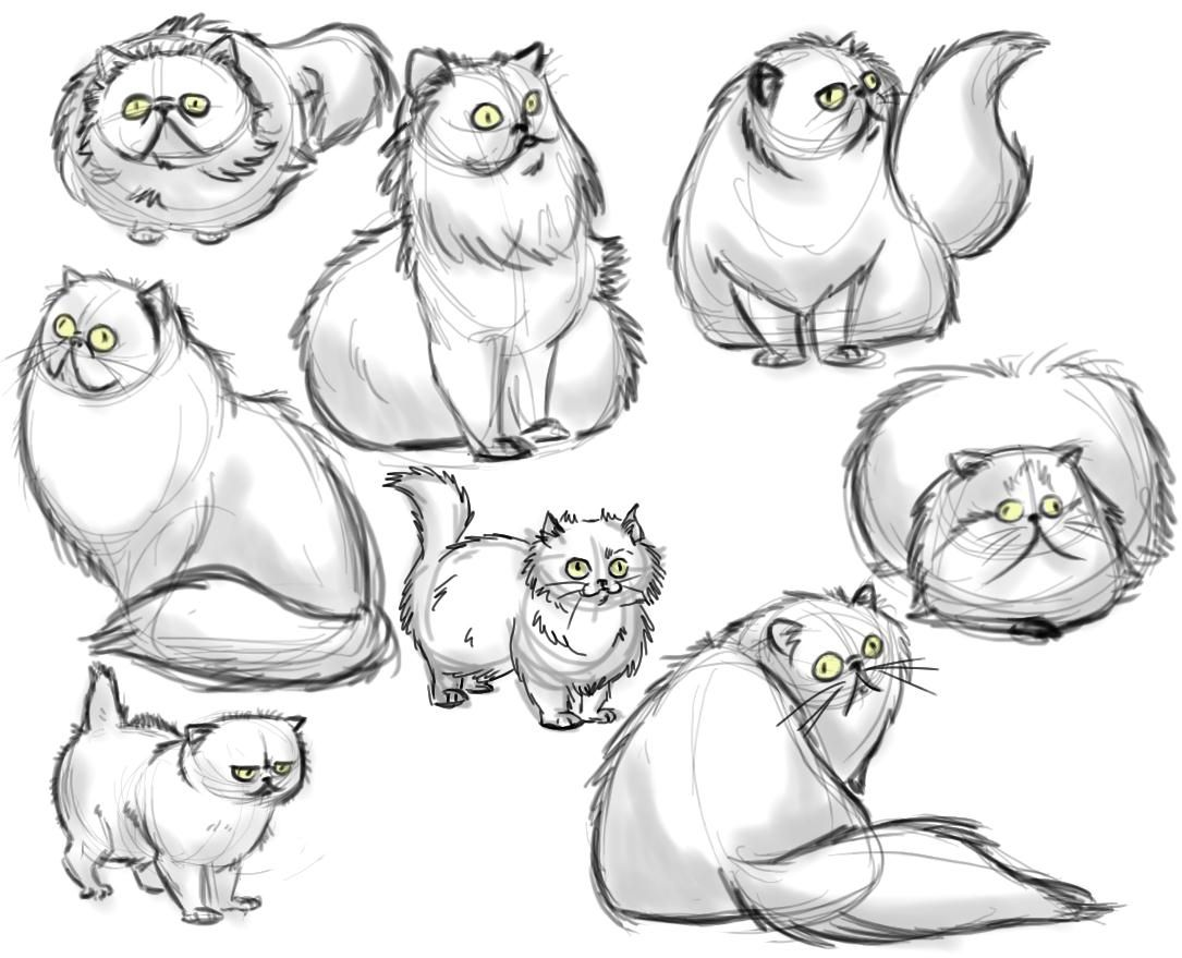 Drawings of persian cats buscar con google