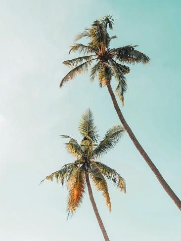 Giclee Print: Beach Waves Photography by Tanya Shumkina : 40x30in