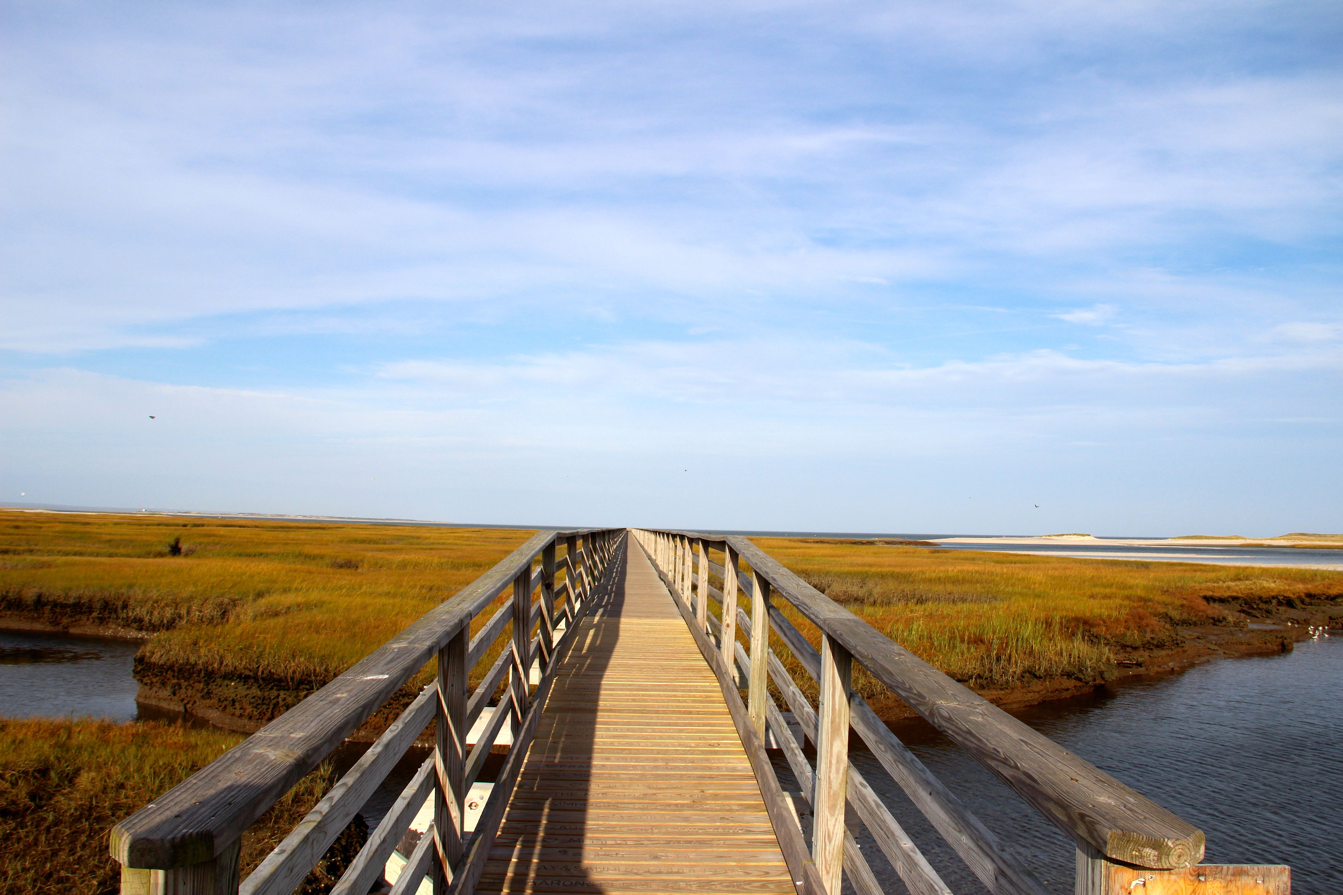 Bass Hole Boardwalk At Grays Beach In Yarmouth, Ma On
