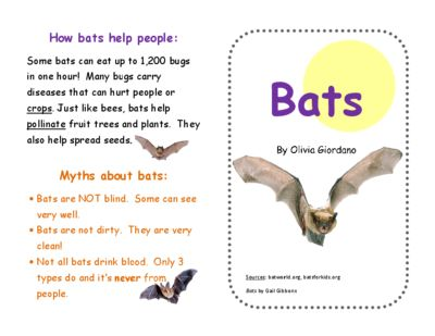 Bats! A Mini Book with Diagram and Fact & Opinion Activity from ...