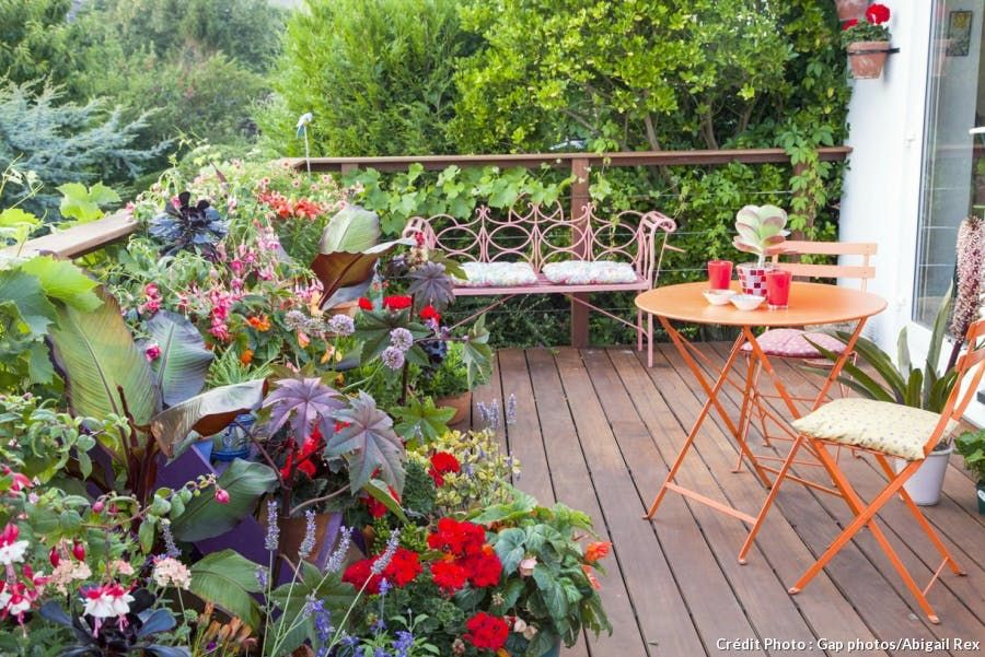 Amenager Et Vegetaliser Une Petite Terrasse Fleurie Avec Images