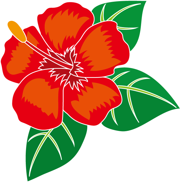 Hibiscus Flower Template Free Download Yourself
