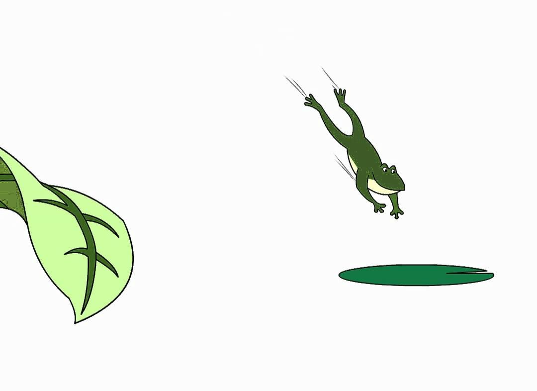 Jumping frog animation (With images) | Frog, Animation ...