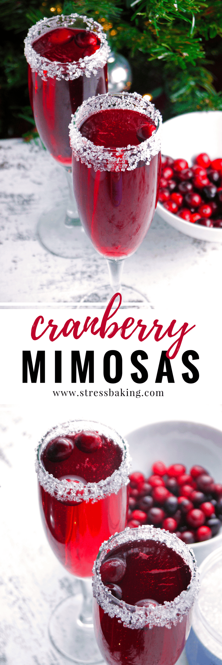 Cranberry Mimosas: A cranberry lover's version of the standard mimosa. Tart cranberries pair perfectly with a sugar-rimmed glass and sparkling champagne bubbles! The perfect holiday cocktail or Christmas cocktail. | cranberry cocktail | easy cocktail | holiday drink | stressbaking.com #stressbaking #holidays #christmas #thanksgiving #newyears #cranberries #drinks #cocktail