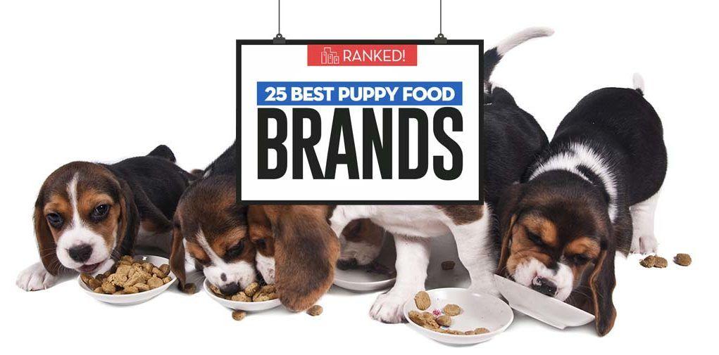 25 Healthiest Puppy Foods For 2018 Puppy Food Best Puppy Food