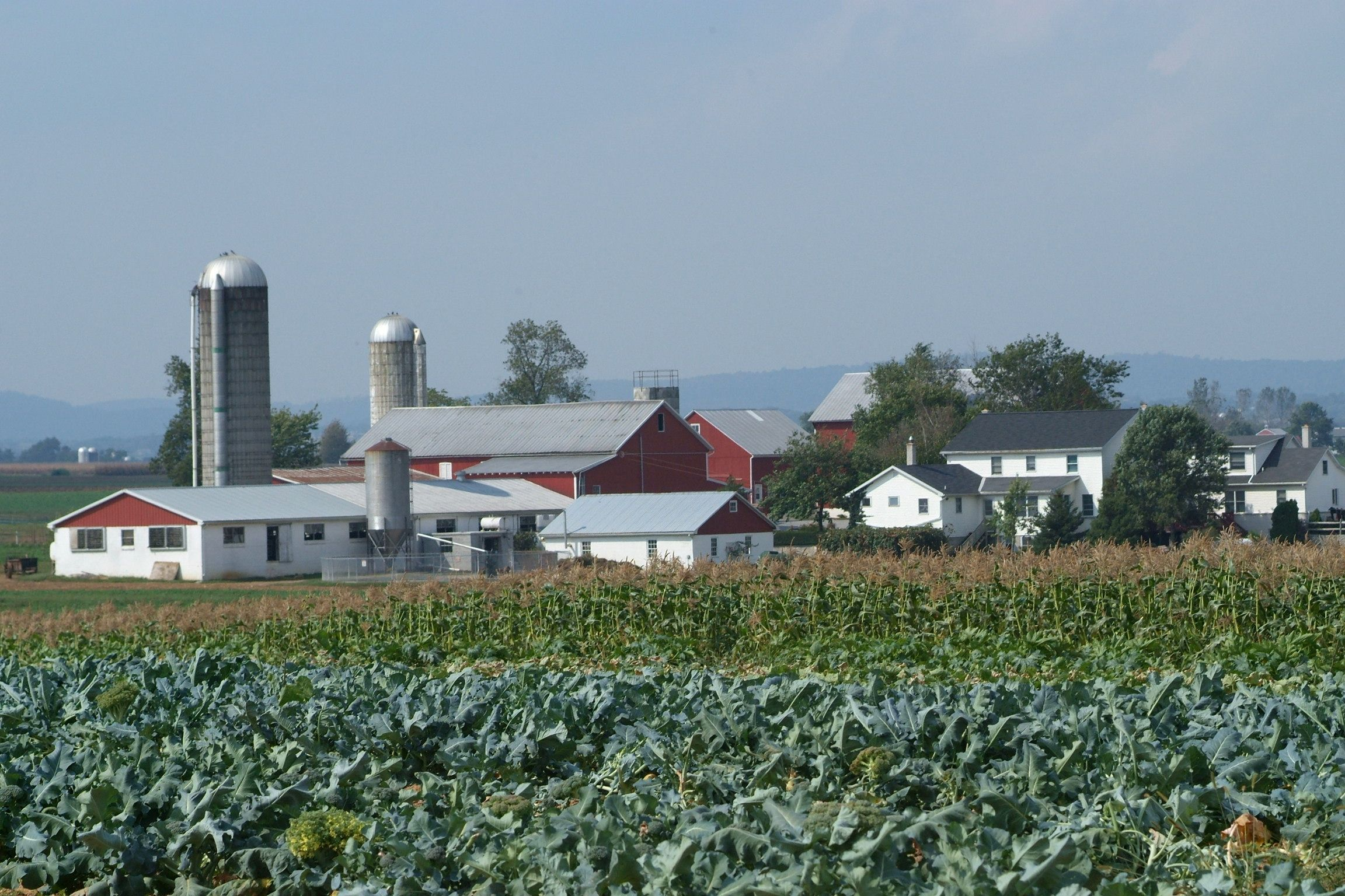 Farmland In Lancaster County Pa It S America S Garden Spot Amish Farm Amish Farm And House Amish Country