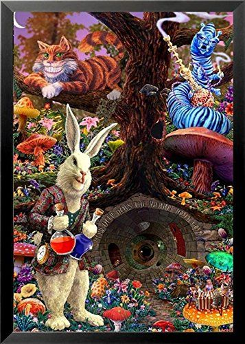 FRAMED Down the Rabbit Hole - Alice's Adventures in Wonde... http://www.amazon.com/dp/B01FBE0ZAY/ref=cm_sw_r_pi_dp_PNJmxb16G8C5T