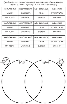 Stellaluna venn diagram kindergarten activity wiring diagram stellaluna comparing bats birds free download book author rh pinterest com venn diagram compare characters venn ccuart Image collections