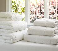 Quallowarm Ll Toddler Comforter 12 Oz Plain Toddler