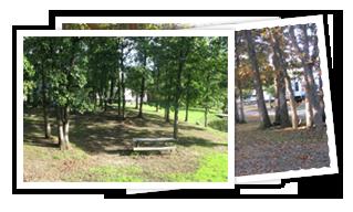 Welcome To Emerald Oaks Rv Park At Mark Twian Lake In Monroe City Missouri Rv Parks Monroe City Lake