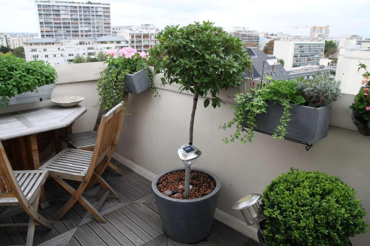 Arbre En Pot Terrasse j'aime cette photo sur deco.fr ! et vous ? | décoration