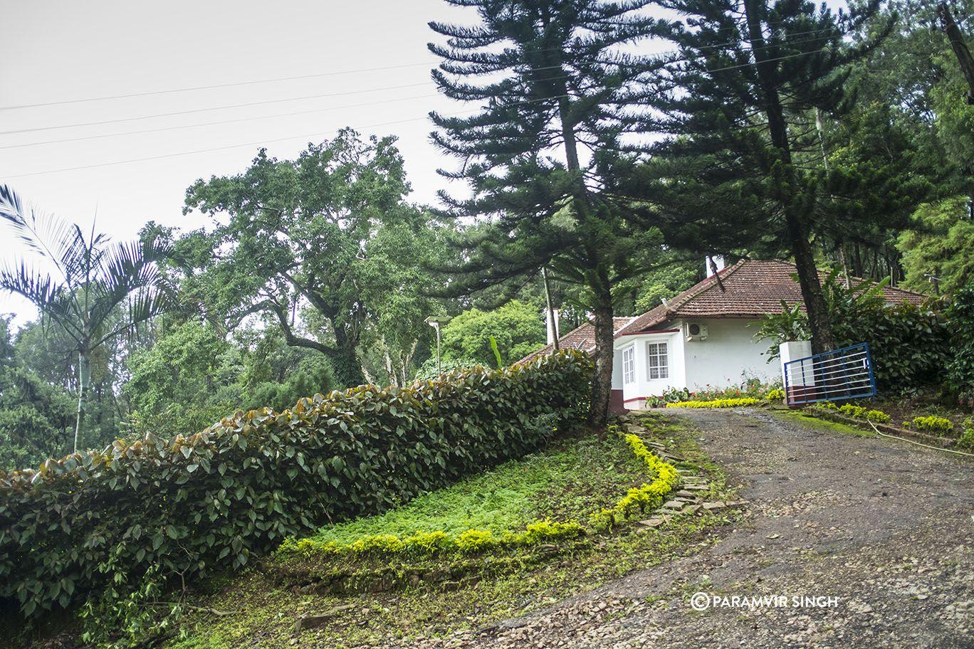 L A Places Bungalow Heaven: Chikmagalur : A Dreamy Misty Coffee Heaven