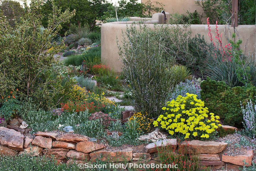 Raised Bed Gardening In New Mexico