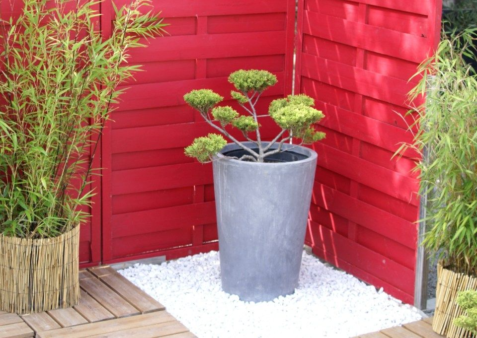 terrasse japonaise Jardin Pinterest Japonais, Le secret et