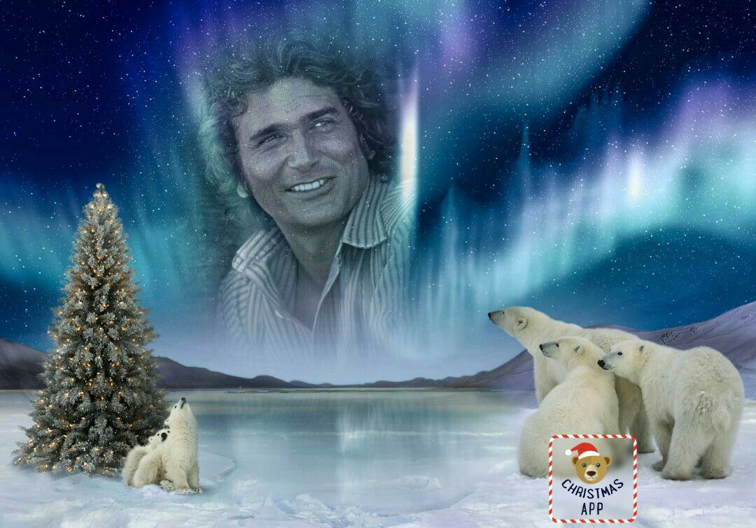 Pin by Judy Skau on Michael Landon Polar bear, Photo