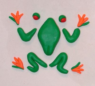 Clay Frog Project | Tree frog clay project parts