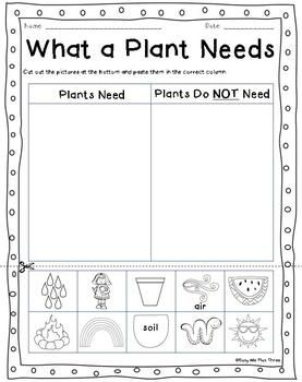 Plant Life Cycle Worksheets Observation Journal Crafty Posters