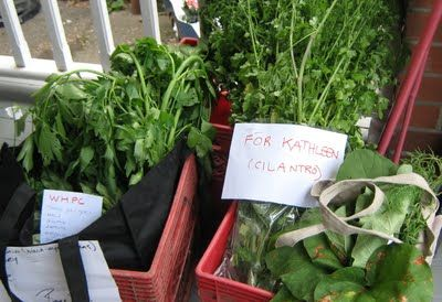 Fresh, Local Food for Free: Starting a Produce Cooperative. Tips on starting your own local free produce swap!