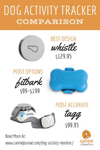 Best Dog Activity Monitor FitBark vs Whistle vs Link AKC