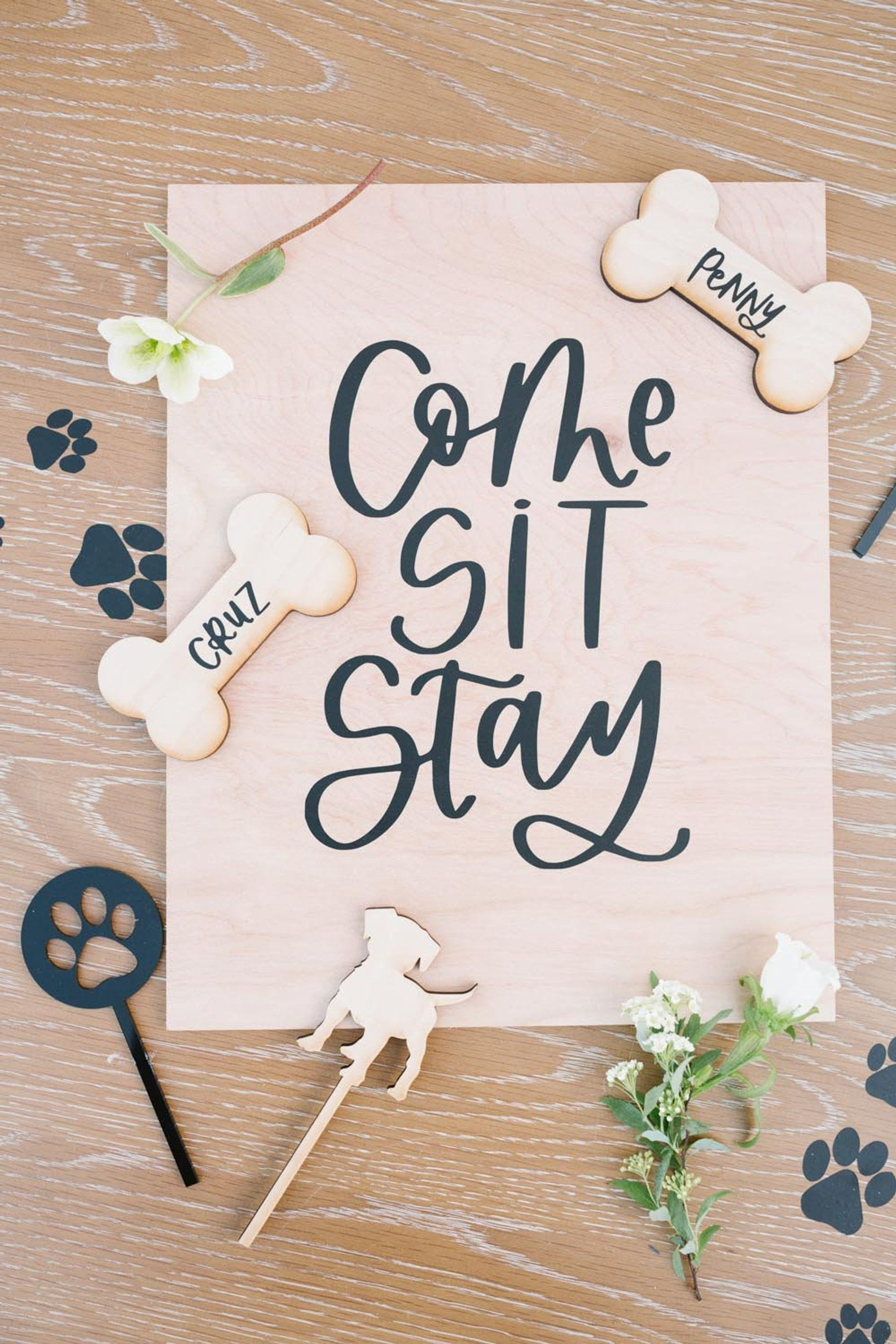 11x14 Dog Party Sign Puppy Party Come Sit Stay Birthday