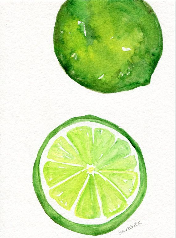 Original Limes Watercolor Painting Small Citrus Fruit Watercolor Fruit Fruit Painting Watercolor Paintings