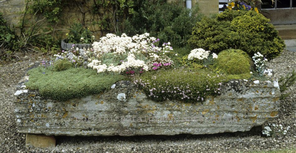 A Large Stone Trough In The Garden Of The Late Joe Elliottu0027s In Broadwell,  Moreton