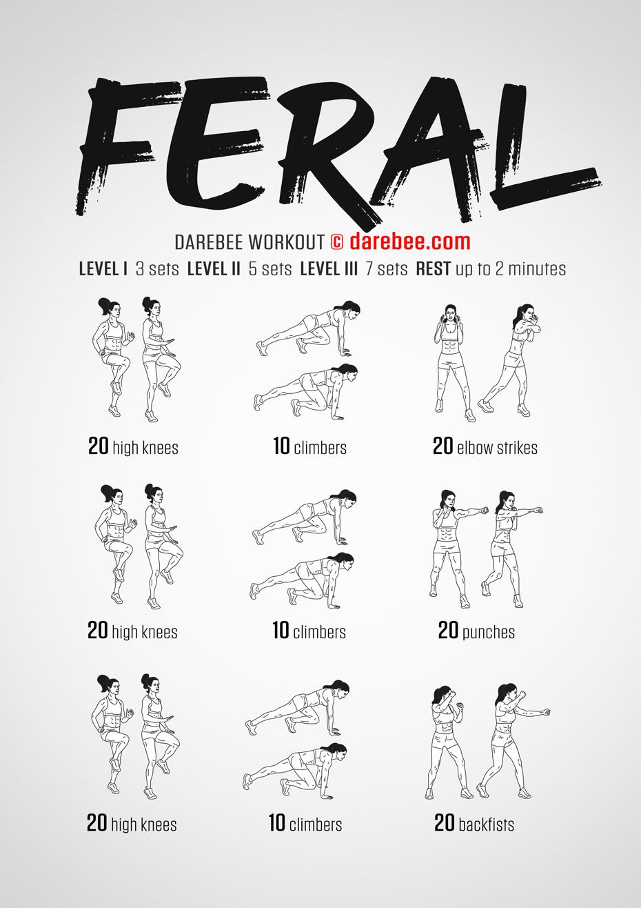 Feral Workout Darebee, Gym for beginners, Home boxing