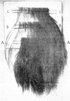 Skizze der Verarbeitung von Faserbärten zu Pelz.  Mastrocinque 1928