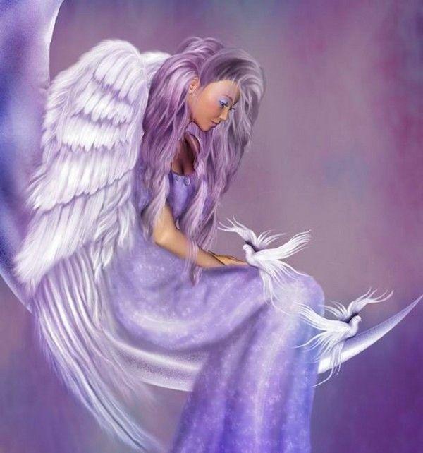Très dans fond ecran ange violet 5ea8f0a5   Elves and things that go  JK66