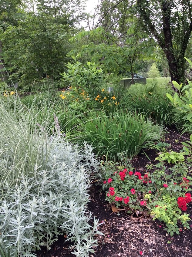 A Wildlife-Friendly Garden | Wildlife, Gardens and Garden ideas