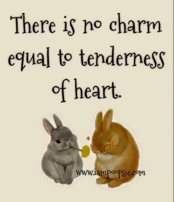 Pin By Rosita On Rabbit Inspirational Thoughts Meaningful