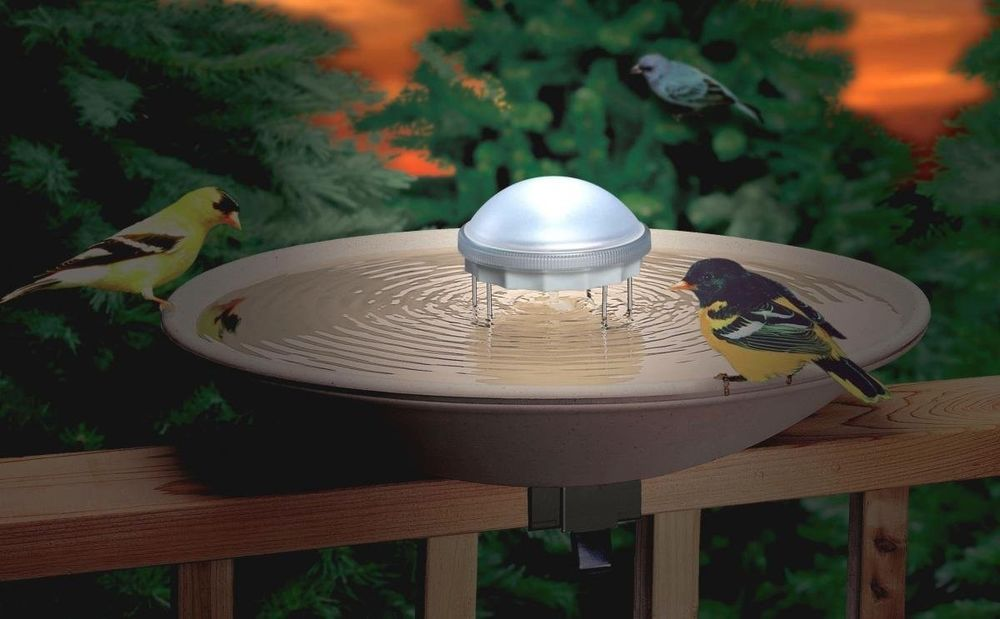 Solar Ed Water Wiggler For Bird Bath Keeps
