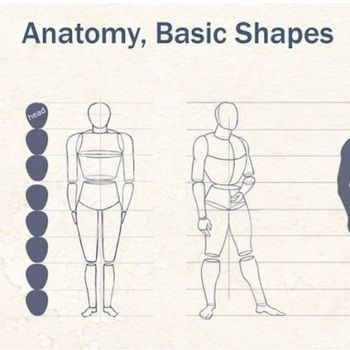 Gráficos que muestran como dibujar partes del cuerpo y