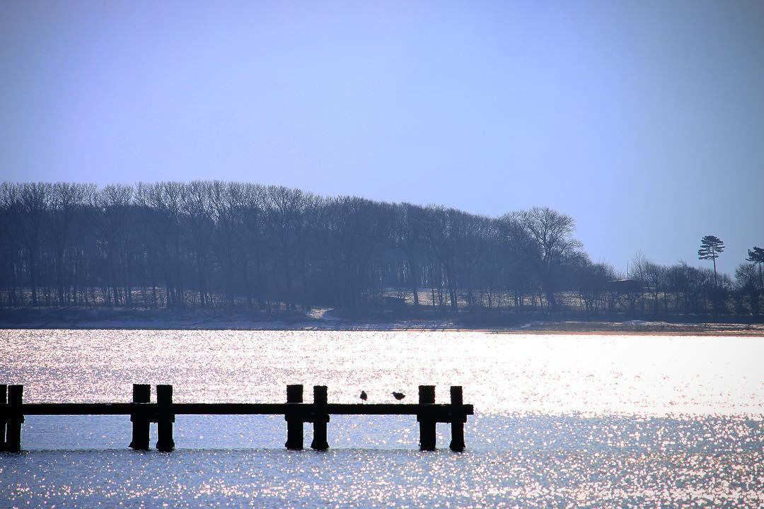 Med Torø som baggrund #visitfyn #fyn #nature #visitdenmark #naturelovers #natur #denmark #danmark #dänemark #opdagdanmark #naturegram #mitassens #winter #fynerfin #natureshots #naturegram #countryside #february #winterindenmark