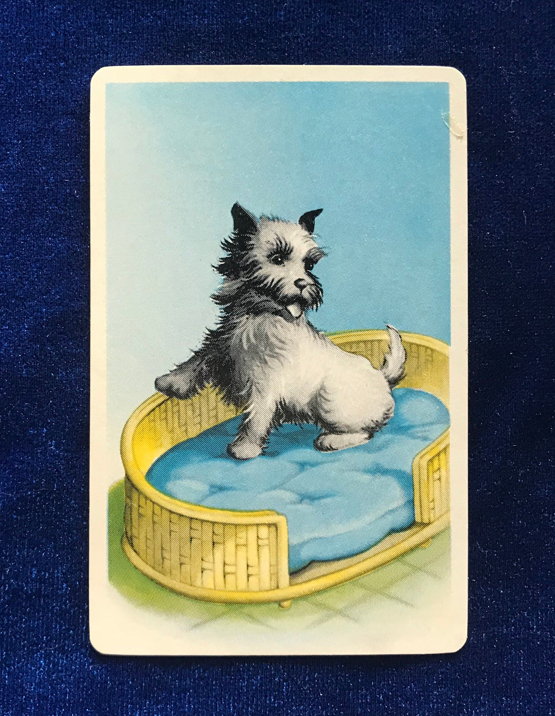 1940 S Cairn Terrier Dog Playing Card Mother S Day Gift Cairn