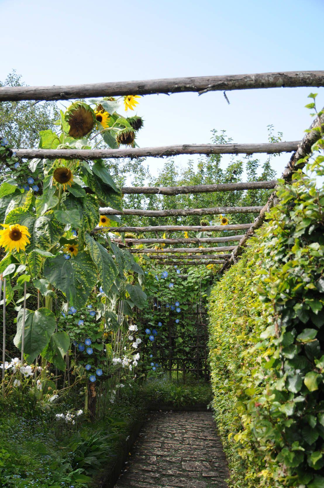 Geniale Gartenideen Für Wenig Geld