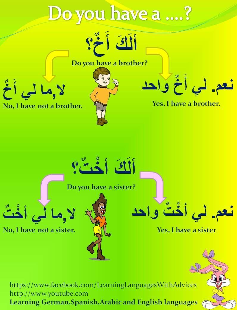 Arabic Phrases and Common Sentences - Linguanaut