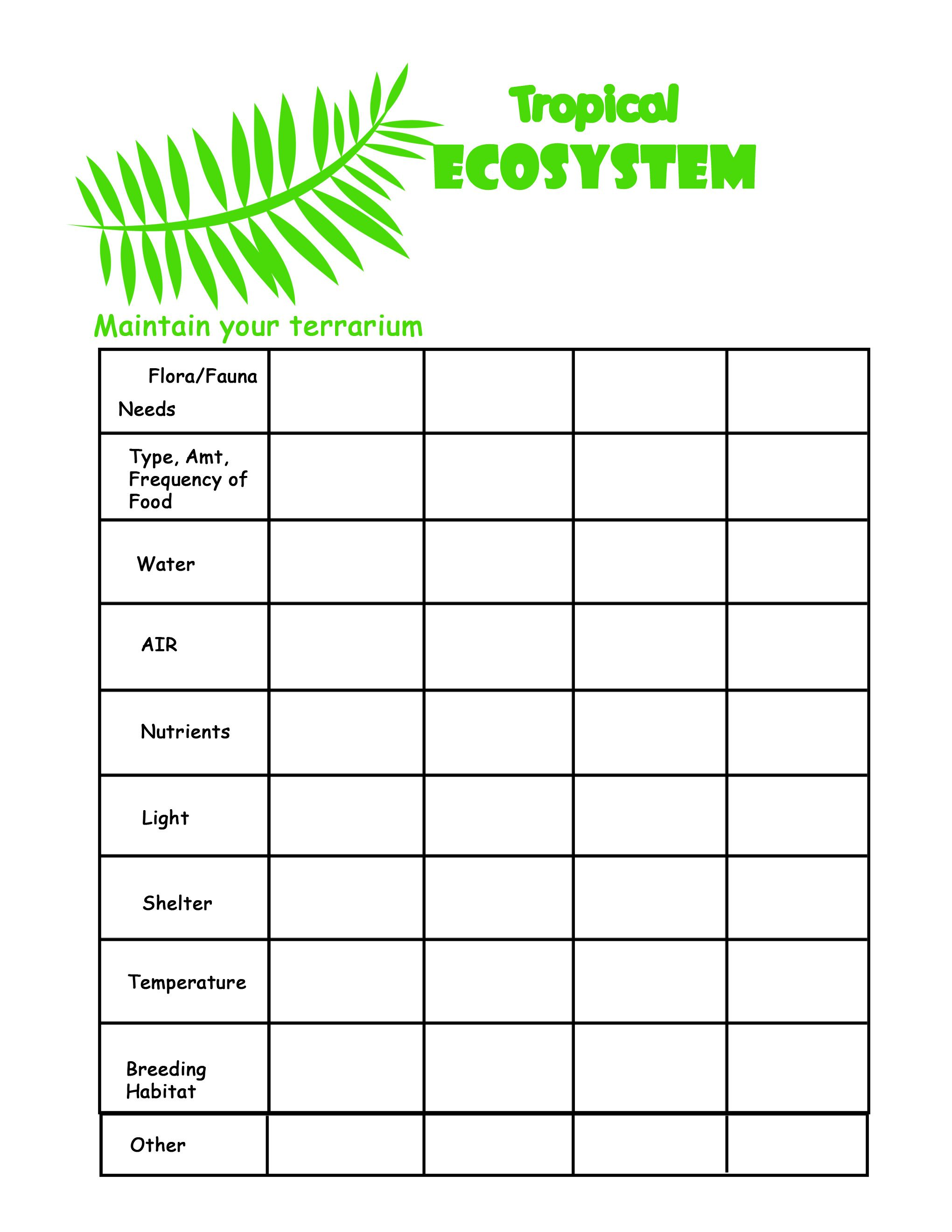 Collection of Ecosystems For Kids Worksheets browse