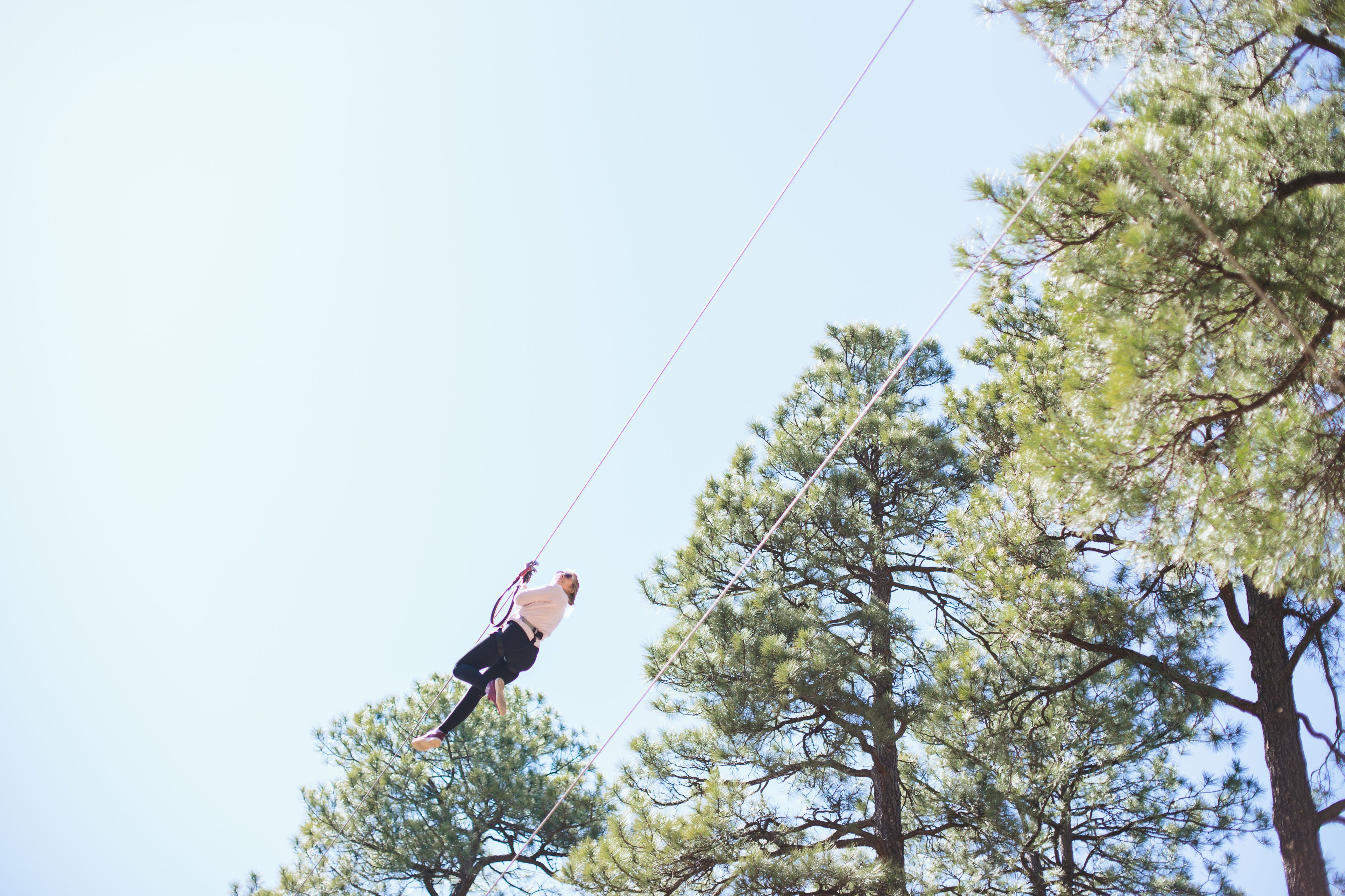 Arizona Zip Lining Flagstaff Extreme Ziplining Extreme Adventure