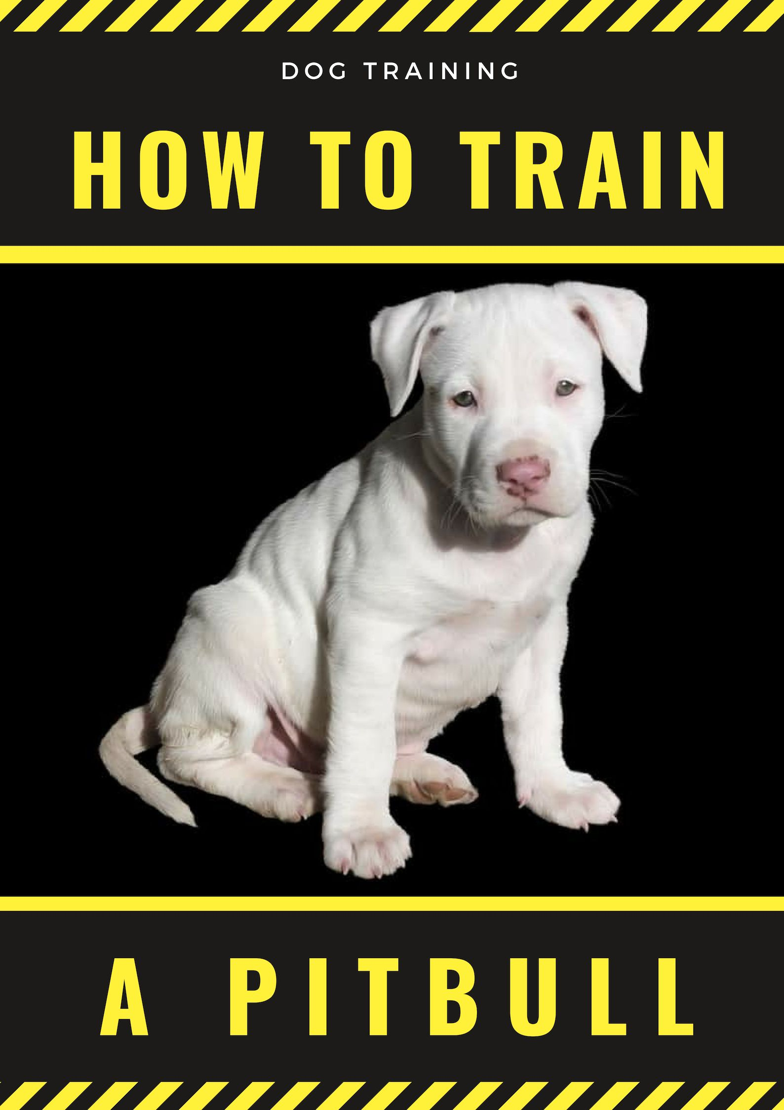 Few Quick Tips On How To Train A Pitbull Combined With Some