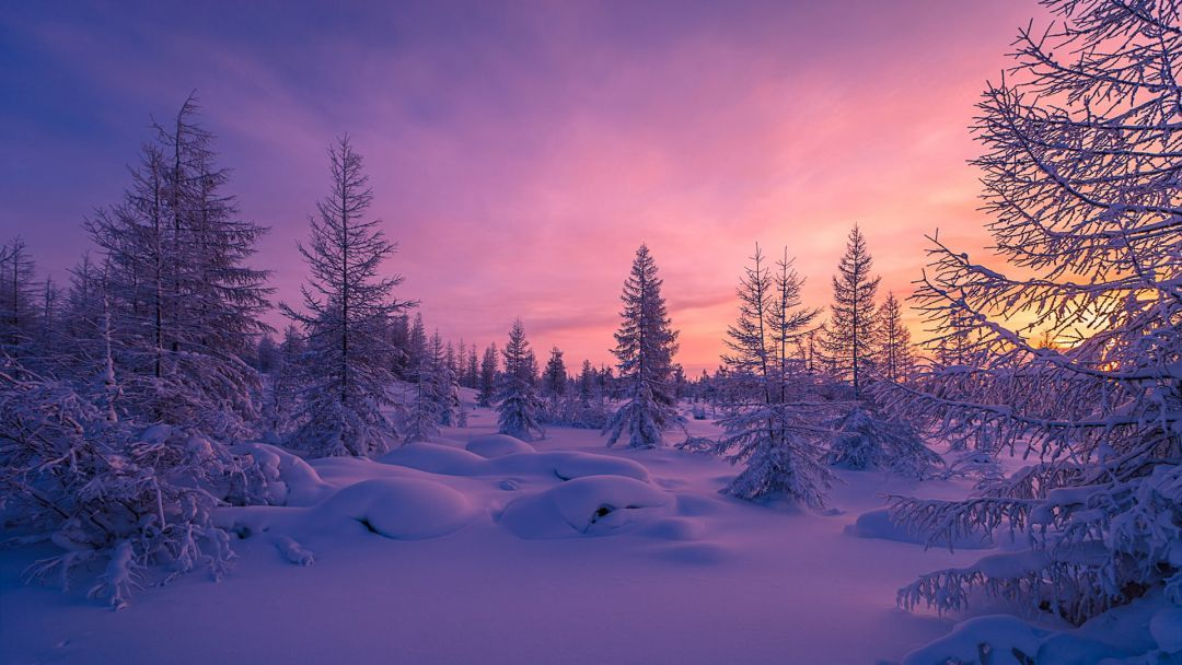 Android Iphone Desktop Wallpapers 1080p 4k 5k 54179 Wallpapers Hdwallpapers Androidwallpapers Winter Landscape Winter Forest Landscape Wallpaper