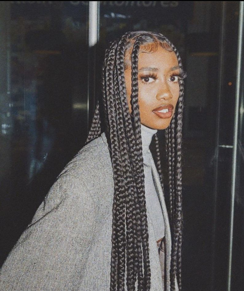 Pin By Yashie On Beautiful People In 2020 Braided Hairstyles