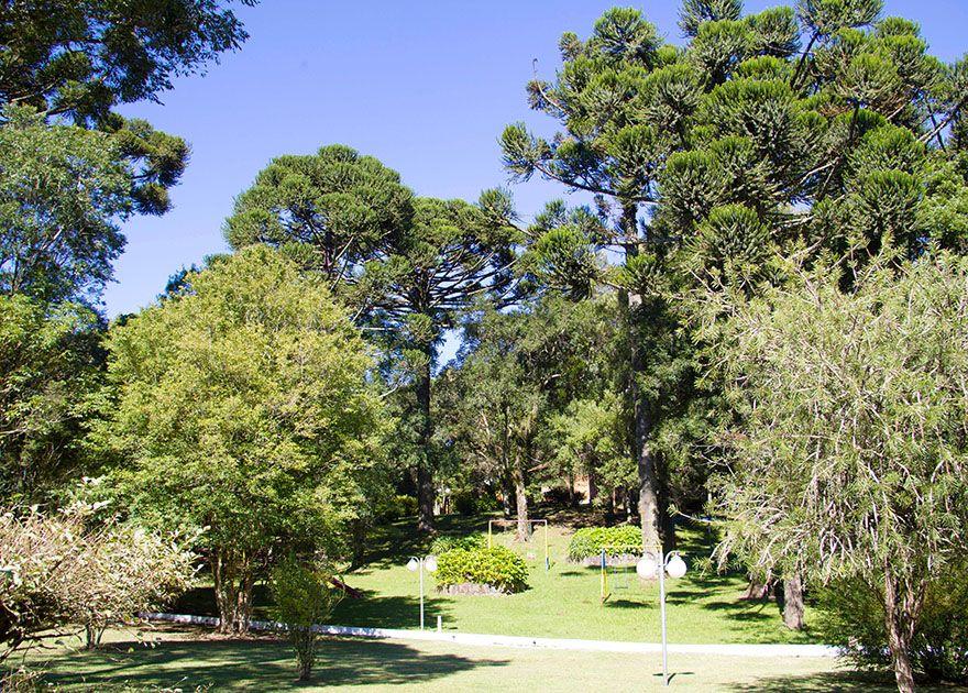 Vista panorâmica do jardim e playground da Harmonizza Espaço de Eventos.
