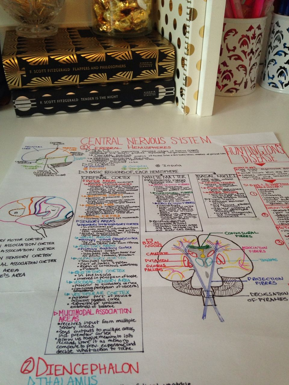 Pre Slp Making Physiology Anatomy Concept Maps Ap Biology