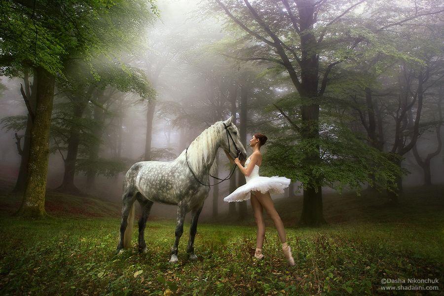 Resultado de imagem para horses and ballerinas