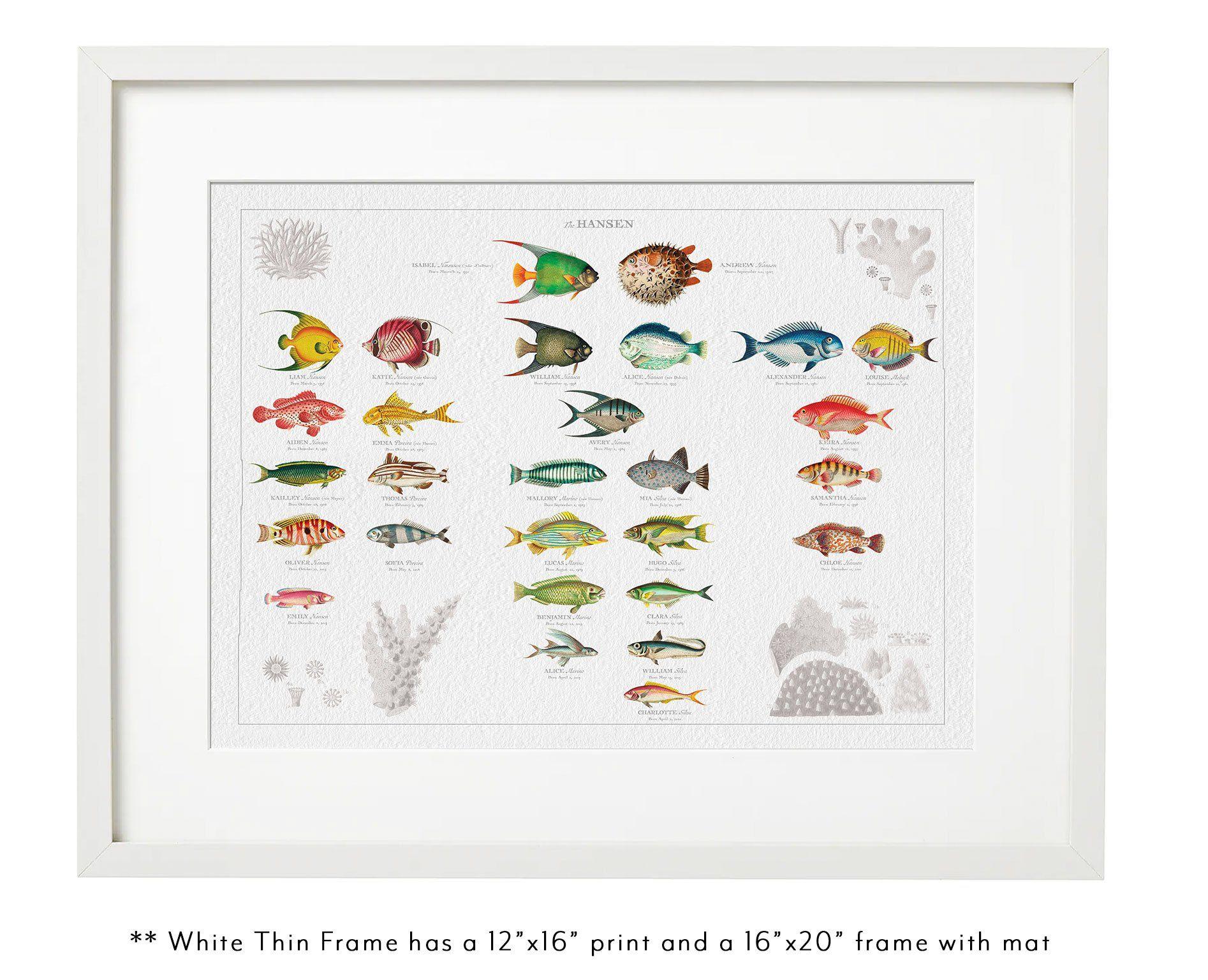 VINTAGE FISH FAMILY BOTANIC 16 x 12 Thin White