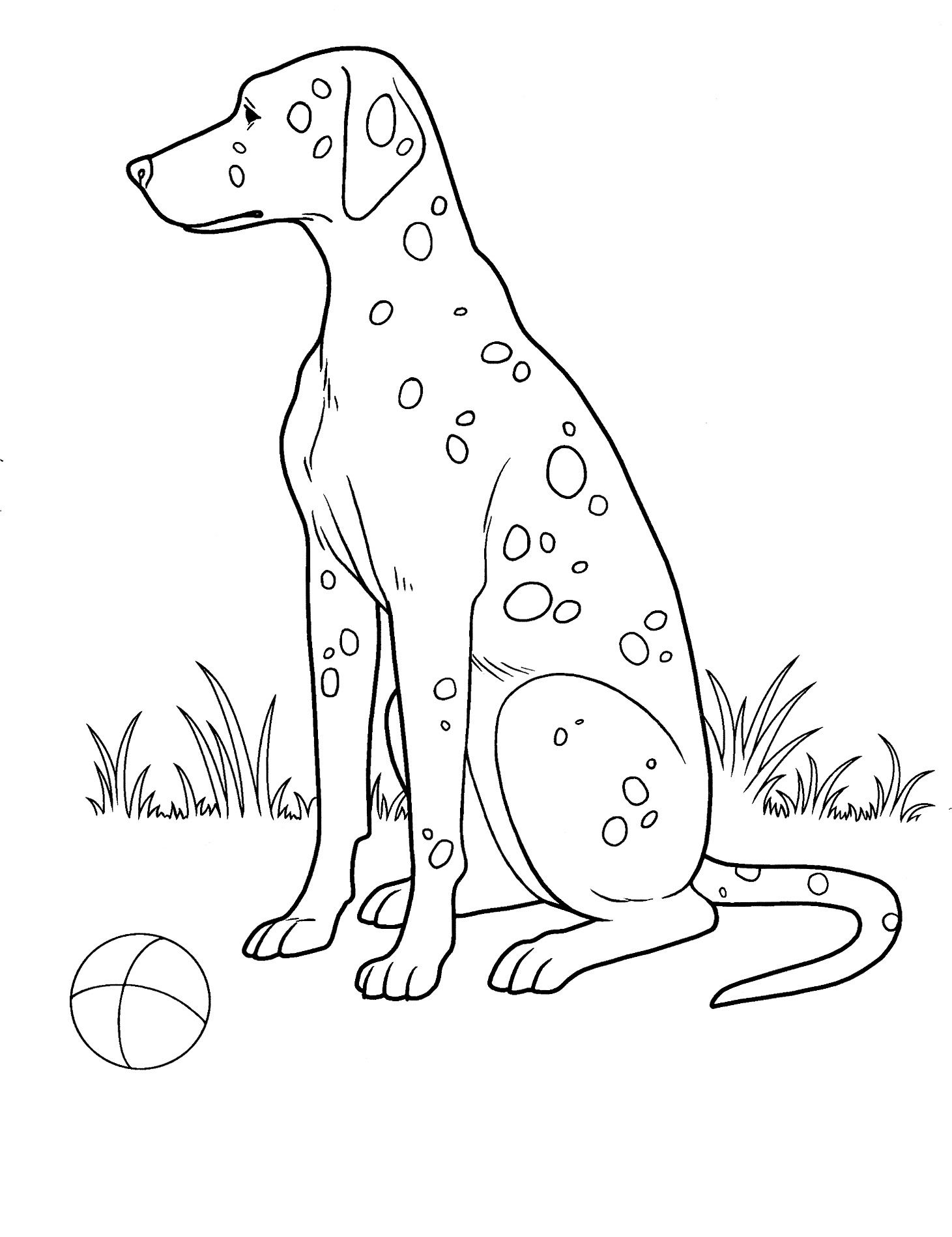 Dog Coloring Pages 27 Teenagers Coloring Pages Dog Coloring Page