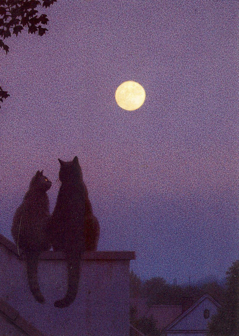 Full Moon Illustrated By Quint Buchholz Inkognito Card No 2843 Sky Aesthetic Aesthetic Pastel Wallpaper Pastel Aesthetic