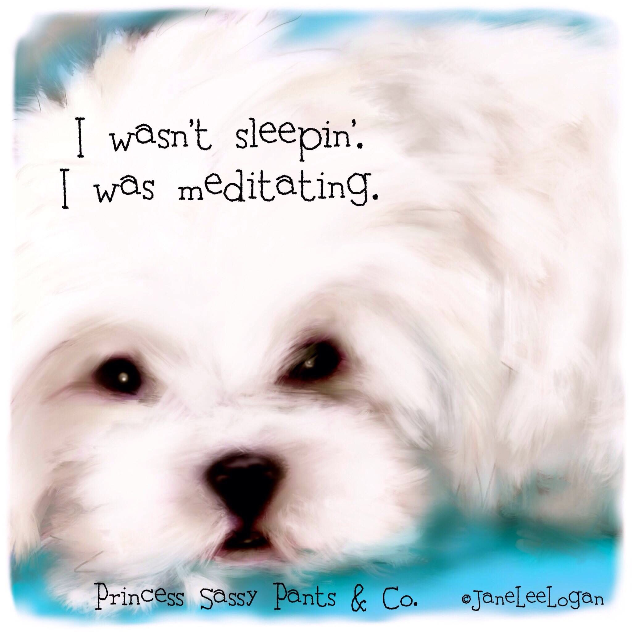 Meditation Dog Quotes Dog Quotes Love Cute Dog Quotes